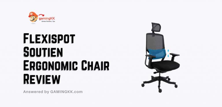 Flexispot Soutien Ergonomic Chair Review